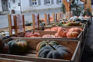 Kürbisausstellung auf dem Kreuzplatzhof in Boningen